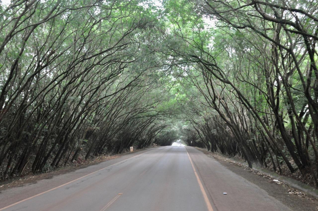 DSC_0402 paraguay - DSC 0402 - Paraguay – Im Land der roten Erde